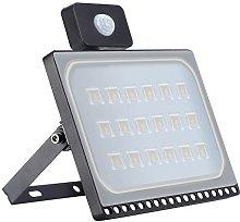 100W Foco LED con Sensor de Movimiento, Blivrig