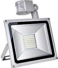 10W//30W/50W/100W luz Foco LED foco exterior - Luz