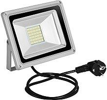 30w Foco Proyector LED de Luz Fría para