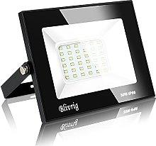 30W LED Foco Exterior de alto brillo,Blivrig