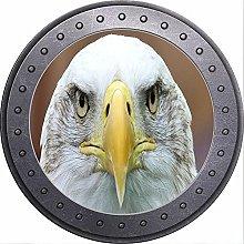 3D ojo de buey vista águila pared pegatina cartel