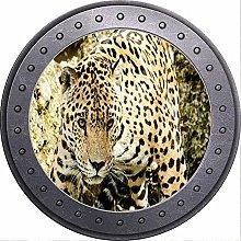 3D ojo de buey vista leopardo salvaje Jaguar
