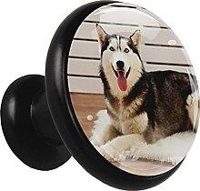 4 Paquetes De Perillas De Metal Para Cajones Perro