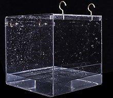 Bañera Pajaros Caja De Plástico Para Baño De