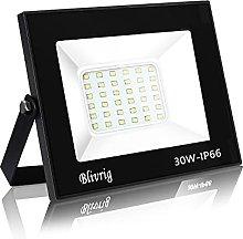 Blivrig 30W LED Foco Exterior de alto