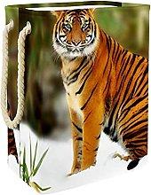 Caja De Almacenaje Tigre Cesta De Almacenamiento