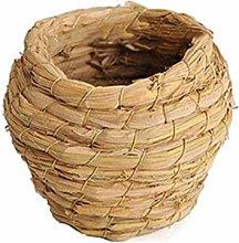 Chiyyak Birdhouse tejido a mano, nido de paja,