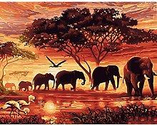 CHXFit Pintura de bricolaje por números Elefantes