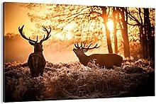Cuadro sobre lienzo - Impresión de Imagen - Deer