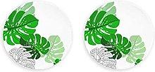 Decoración de hojas de selva tropical, abridor de
