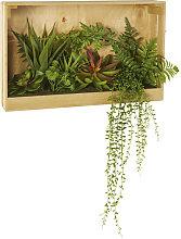 Decoración de pared de paulonia con plantas