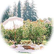 DFVV Sombrilla De Jardín Inclinable Blanca 1.8m,