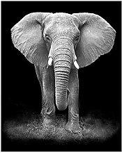 Diamond Painting Elefante Animal Diamont Painting