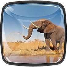 Divertido elefante jugando agua africanDrawer