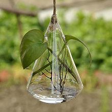 en forma de gota planta hidroponica de escritorio
