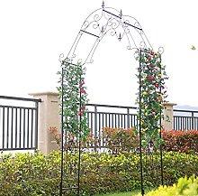 Escalada Archway, Rosa Arco JardíN, Acabado en