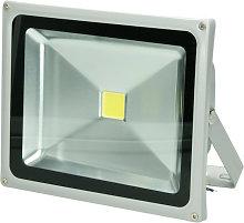 Foco lámpara proyector LED reflector 30W luz
