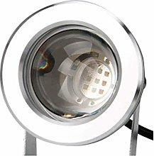 Fuente de luz LED de 12V / 220V IP68 Impermeable