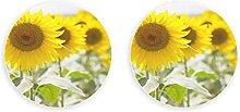 Girasol amarillo hermoso macro naturaleza