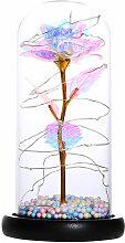 Happyshopping - Cadena de color Cubierta de vidrio