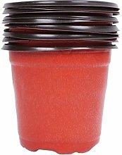 Hemoton 50 Piezas de Florero de Plástico Rojo