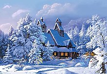 HJHJHJ Puzzle for Adults 3000 Piece (Snow Scene)