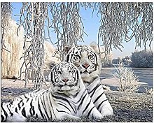 HJHJHJ Puzzle for Adults 3000 Piece (Tiger Couple)