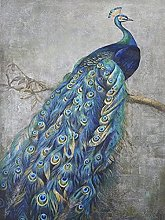 HJHJHJ Puzzle for Adults 5000 Piece (Peacock)
