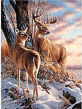 HJHJHJ Puzzle for Adults (Deer) Jigsaw Puzzles 300
