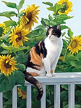 HJHJHJ Puzzle for Adults (Kitten) 2000 Piece