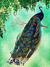 HJHJHJ Puzzle for Adults (Peacock) 6000 Piece