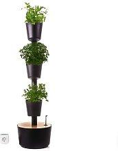 Jardín vertical Aromaticas color negro 4 macetas