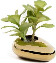 Kave Home - Planta artificial Adenium obesum con