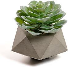 Kave Home - Planta artificial Echeveria glauca con
