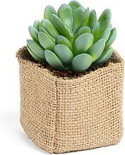 Kave Home - Planta artificial Pachyphytum con
