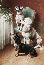 Kit de punto de cruz para adultos perro animal en