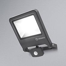 LEDVANCE Endura Floodlight Sensor foco LED 50W