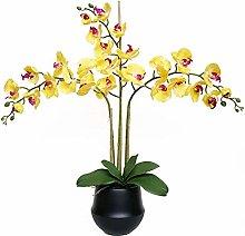 LOMJK Flores Flor de la orquídea Amarilla