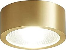 Luz de techo LED montada en superficie Luz de