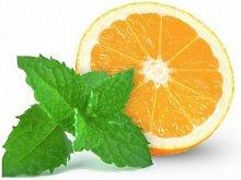 Maceta de Menta Naranja 10,5 cm. Gama Tradicional -