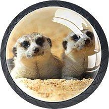 Manija del Armario Lindo Animal Pomo para Muebles