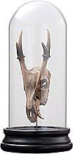 Mankvis Escultura De Estatua De Cráneo Animal