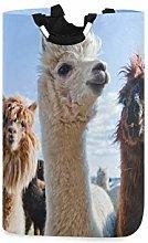 N\A Cesto de lavandería, Alpaca Animal Llama