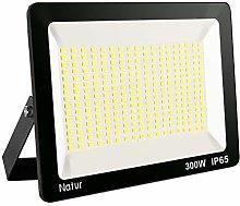 Natur 30000 Lúmenes Focos LED 300W Exterior con