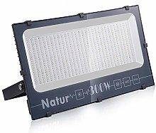Natur 300W LED Foco Exterior alto brillo
