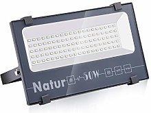 Natur 50W LED Foco Exterior alto brillo