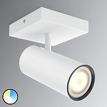 Philips Hue Buratto foco LED blanco atenuador