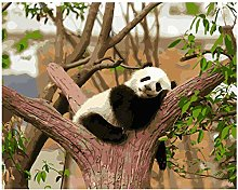 Pintar Por NumerosAdultos Acogedor Panda En El