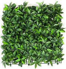 Plancha Jardín Vertical Artificial Pittosporum