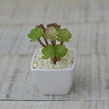 Planta Cactus Artificial con Maceta Blanca de